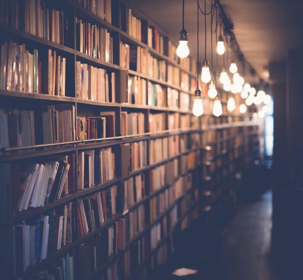 Phot d'un rayonnage de bibliothèque